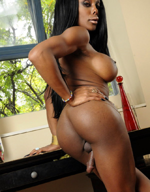Big booty ebony trannies