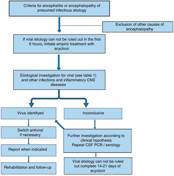 Encephalopathy induced ca neurologist adult rubella