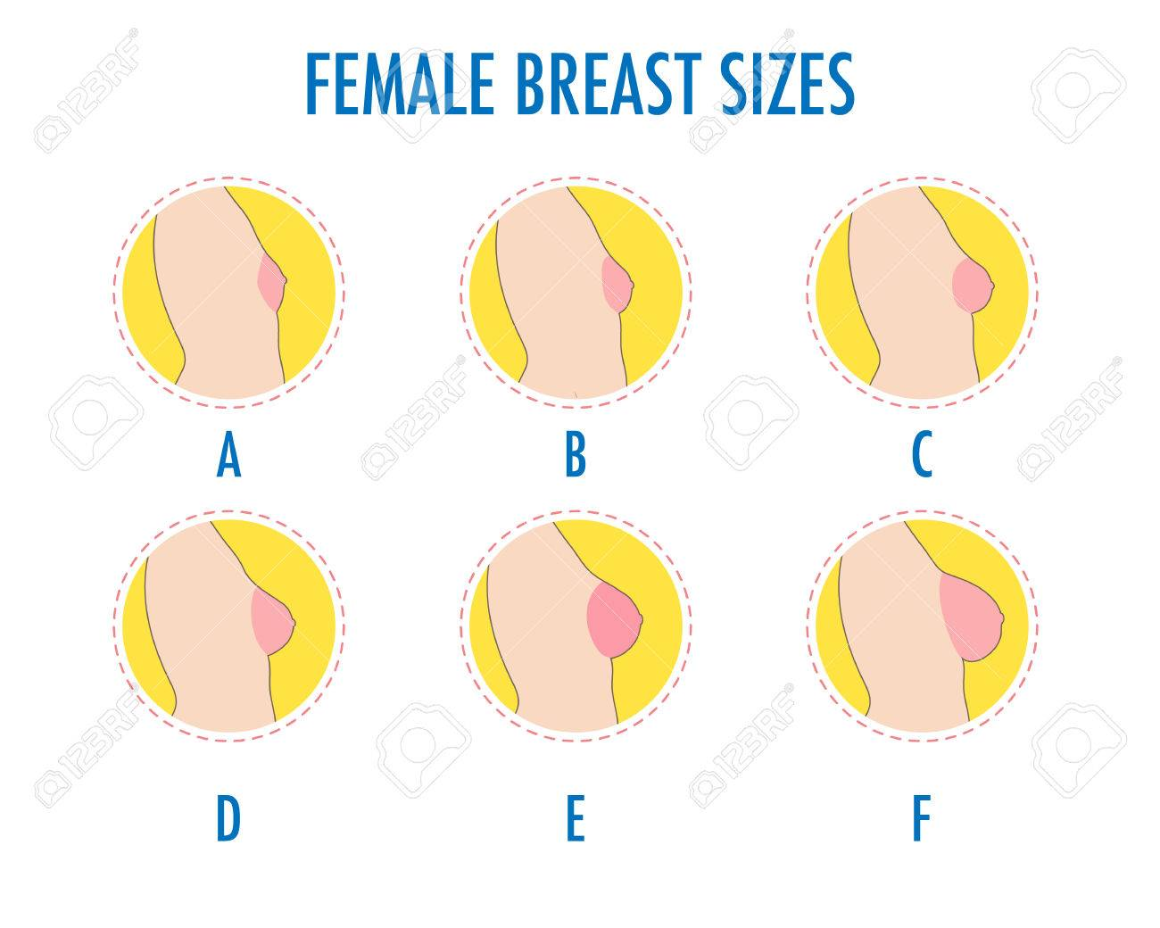 Boobs pics and sizes