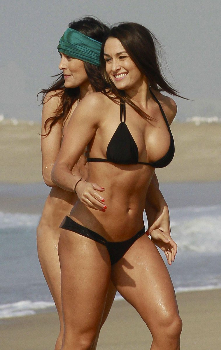 Brie and nikki bella nude