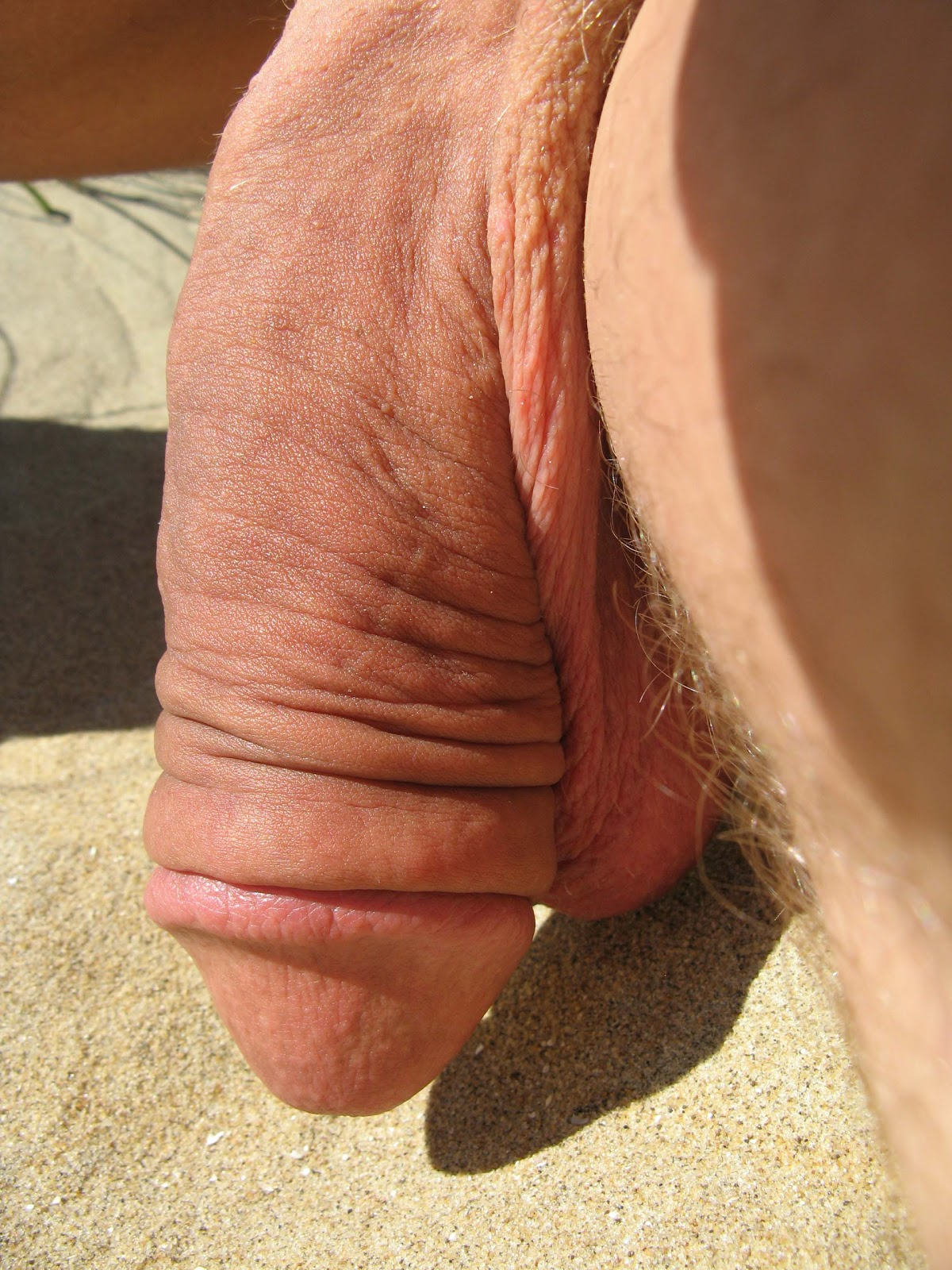 Big flaccid cock photo