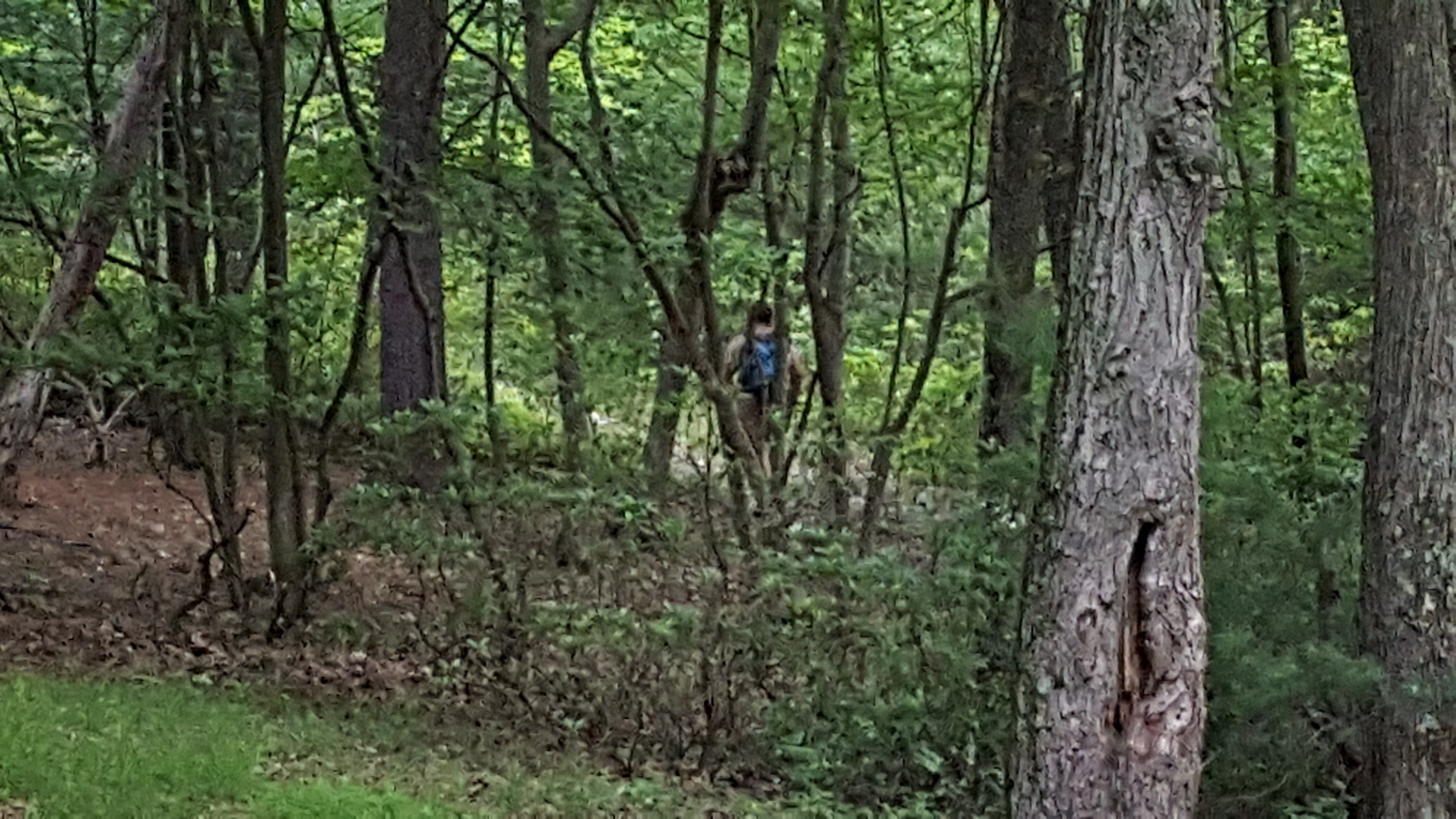 Brothers camping naked in the woods