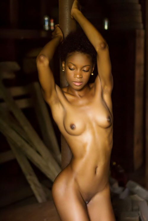 Sexy slim black girls nude