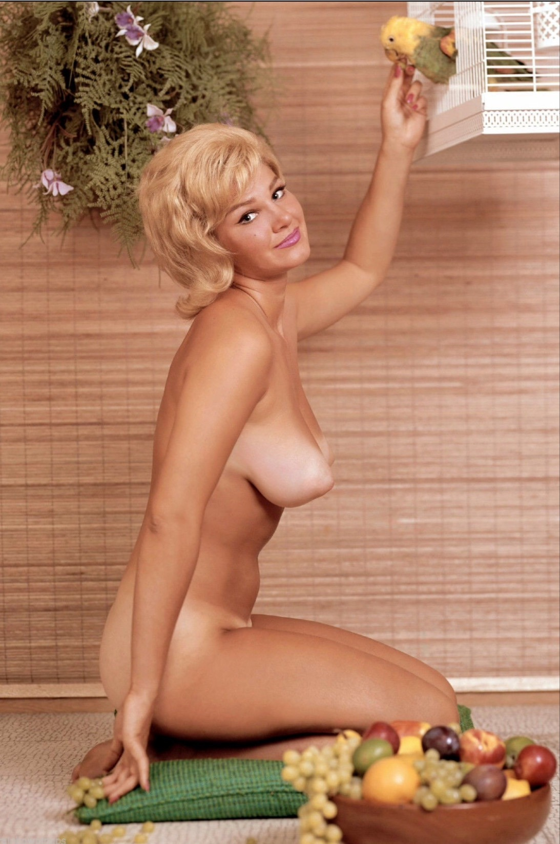Loni anderson nude and bondage