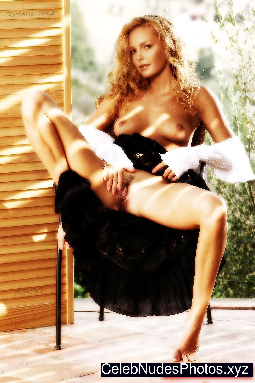 Katherine heigl nude xxx