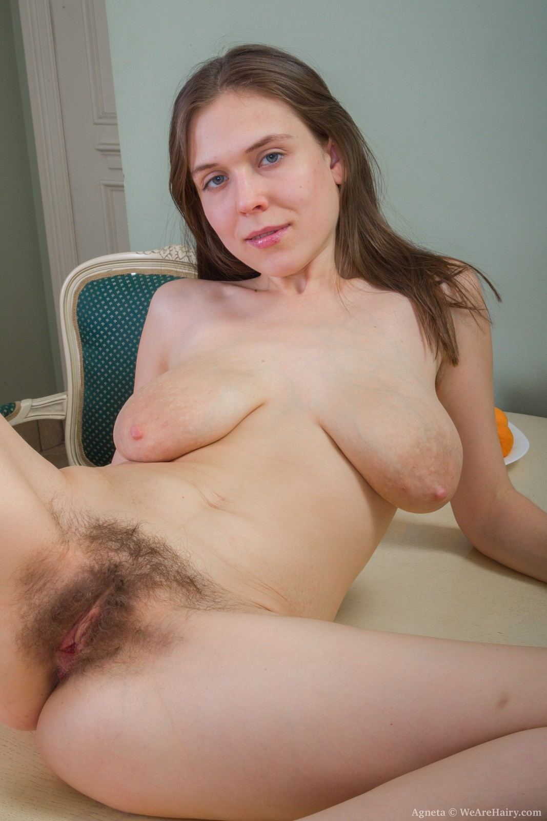 Amateur big tits hairy pussy fuck